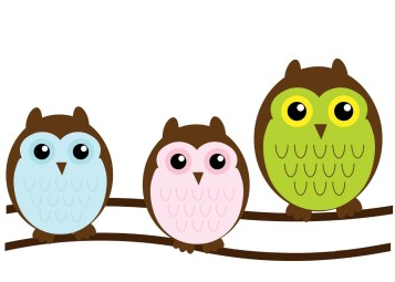 sherm_owls